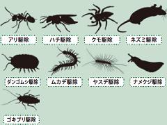 害虫駆除サービス